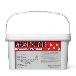 MAXFORCE FLY BAIT