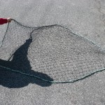 "THROW NET 6"" WITH 2INCH OPENINGS"