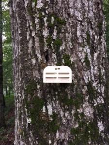 Tree Mount