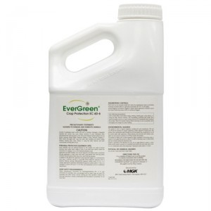 EVERGREEN 32 OZ 6%