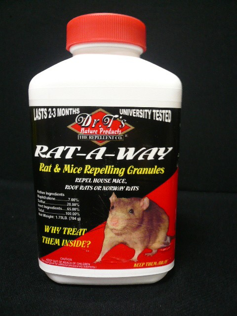 how to keep rats away from home