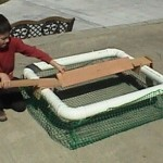 TURTLE SUNNING TRAP ECO