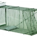 "LIVE TRAP 15"" X 18"" X 42"" REAR DOOR"