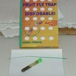 FRUIT FLY BOX TRAP SPRINGSTAR