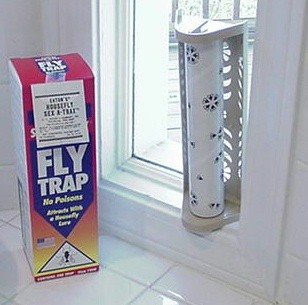 STICK A FLY TRAP