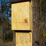 2 Chamber Large Bat House Light (ITEM # 954320)
