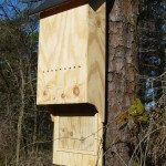 4 Chamber Large Bat House Unfinished (ITEM # 954334)